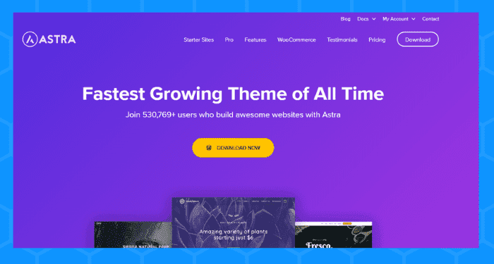 astra best wordpress themes